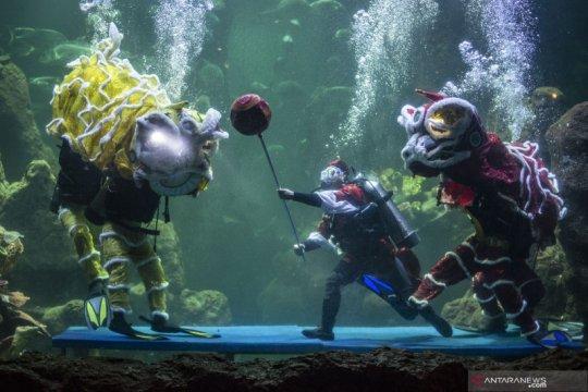 Pertunjukan barongsai dalam air