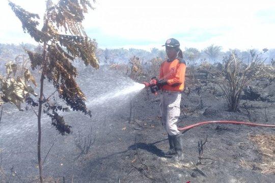 BPBD Agam kesulitan padamkan api bakar sawit warga