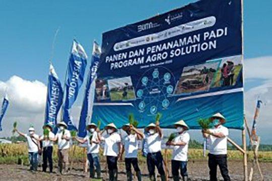 Pupuk Indonesia jaga Agro Solution melalui penyemprotan hama di Jember