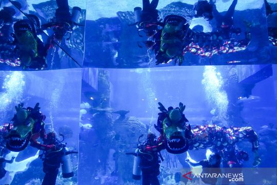 Kemeriahan perayaan Imlek di Jakarta Aquarium dan Safari