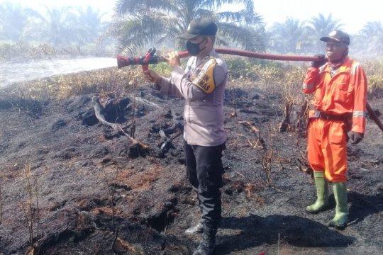 Cuaca panas picu meluasnya kebakaran lahan sawit di Agam-Sumbar