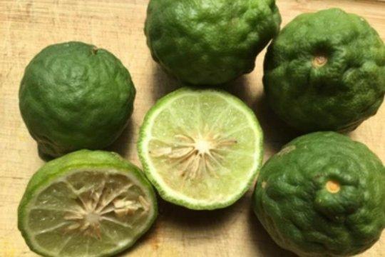 Manfaat jeruk purut, melindungi jantung hingga detoksifikasi darah