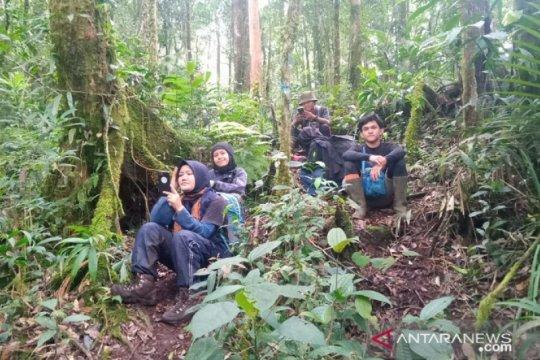 Basarnas temukan tiga pendaki gunung dalam kondisi selamat