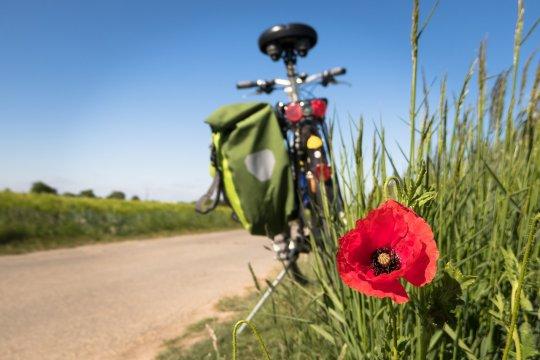 Belajar cara tepat bersepeda untuk kesehatan jantung lewat buku saku