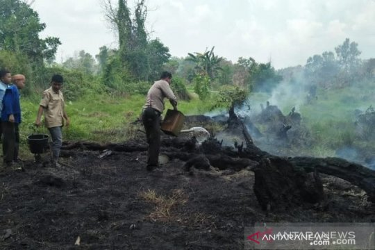 Presiden Jokowi tegaskan sanksi pencopotan bila tak atasi karhutla