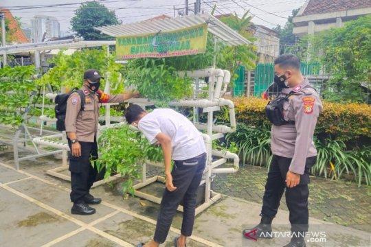 Pemprov DKI catat kebutuhan sayuran capai 1.500 ton per hari