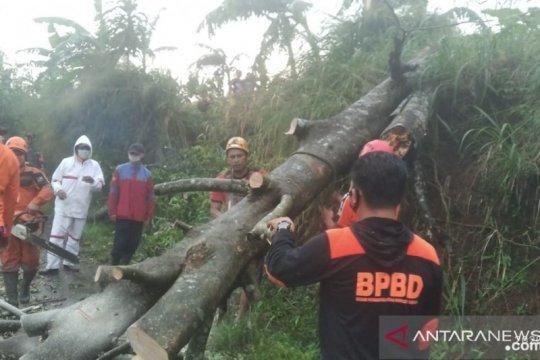 BPBD Kota Bogor tangani 9 bencana dalam 2 hari
