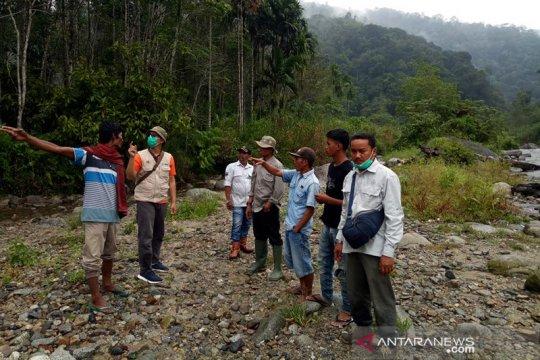 BKSDA: Harimau masuk perkampungan di Rao Utara dipastikan dua ekor