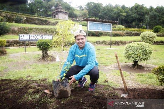 Gerakan menanam pohon berlanjut di tengah pandemi