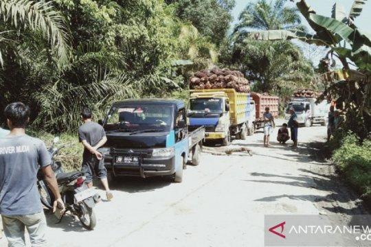 Sejumlah warga Mukomuko, Bengkulu memblokir jalan pabrik sawit