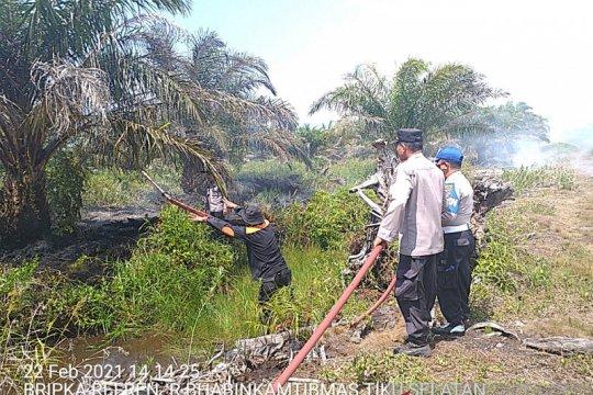 Lahan kelapa sawit 29,5 ha di Agam terbakar, kerugian ratusan juta
