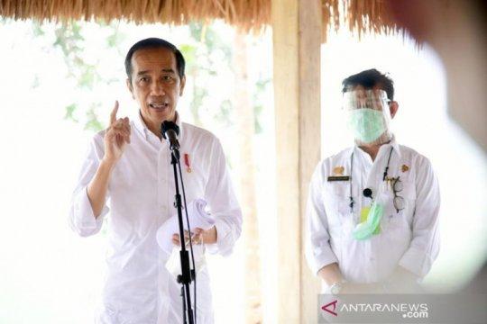 Presiden: Lumbung pangan di Sumba Tengah akan capai 10 ribu hektare