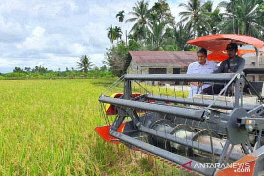 Perkuat stok, Bulog serap beras medium dari Aceh 500 ton