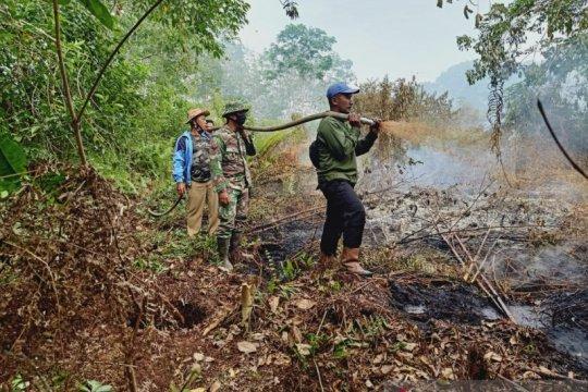 Luas lahan yang terbakar di Riau mencapai 248 hektare