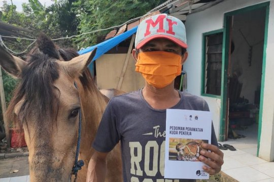 Pengusaha delman Jakarta Timur peroleh insentif