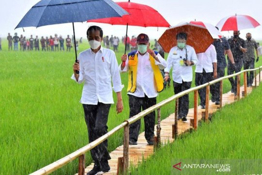 Pertani dipercaya jadi pemasok benih padi bagi lumbung pangan di NTT