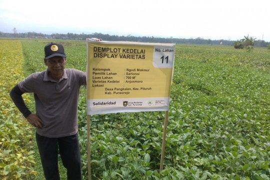 Akademisi: Petani bisa mulai siapkan benih kedelai saat pancaroba