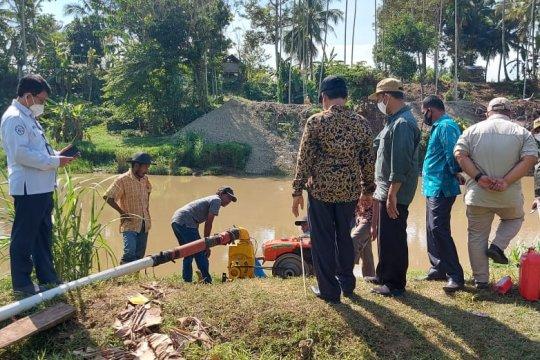 800 hektare sawah di Aceh Besar kekeringan