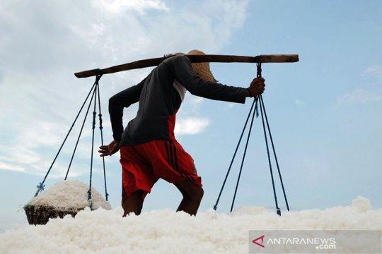 Memaksimalkan penyerapan garam hasil petambak negeri ini
