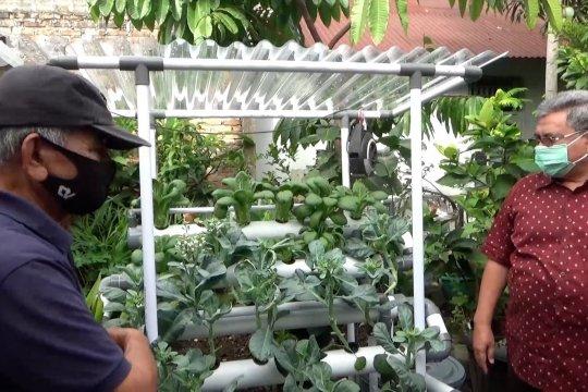 Bantuan tanaman hidroponik dukung program ketahanan pangan
