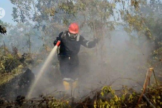Waspadai karhutla, 6 Kabupaten Kota tetapkan status siaga