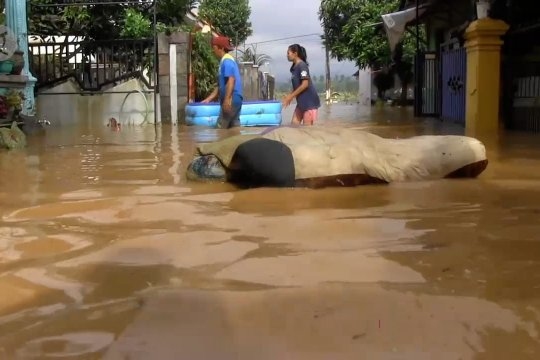 Curah hujan tinggi, Kabupaten Lumajang dikepung banjir