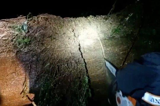 Longsor lumpuhkan Jalur Selatan Lumajang - Malang