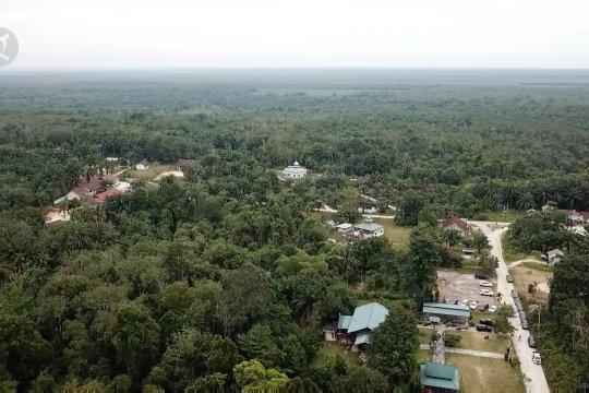 Pemprov Riau berharap 300 hektare hutan adat dapat pengakuan