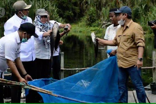 Memanen manfaat dari menjaga kawasan Danau Zamrud