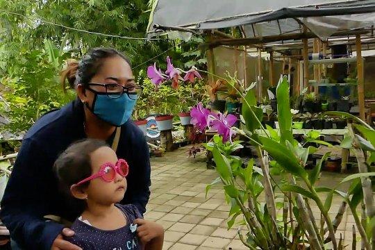 PLN dukung pengembangan wisata edukasi kebun anggrek