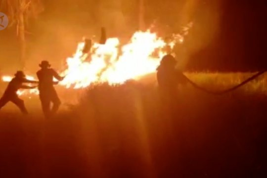 Taman Nasional Rawa Aopa Watumohai kembali terbakar