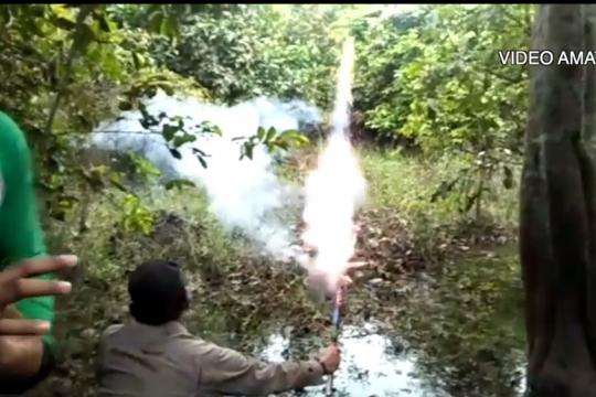 Gajah liar masuki 3 desa, BBKSDA Riau upayakan penggiringan
