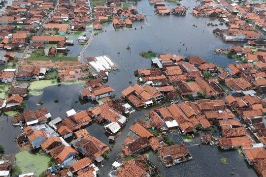 Banjir rob di Pekalongan rendam 16 kelurahan