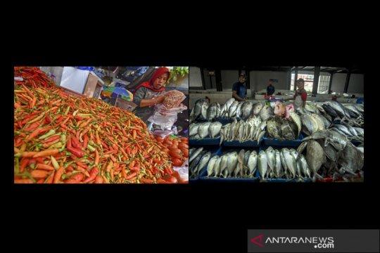 BPS: Kenaikan harga cabai rawit dan ikan picu inflasi Februari 2021