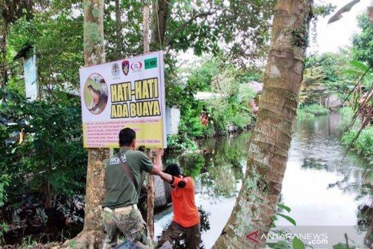 Garap wisata satwa buaya, Kotawaringin Timur ajukan izin ke KLHK