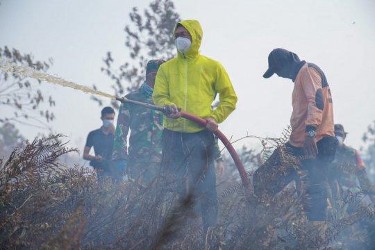 Pemkot Pontianak catat 40 hektare lahan gambut kota terbakar