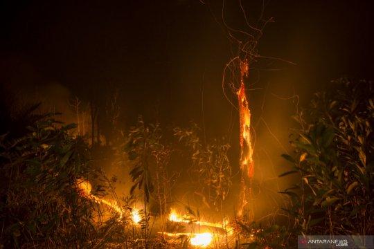 Riau sediakan alat berat untuk masyarakat buka lahan tanpa bakar