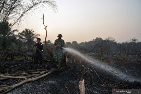 Daerah rawan kebakaran hutan-lahan diminta waspada usai pancaroba