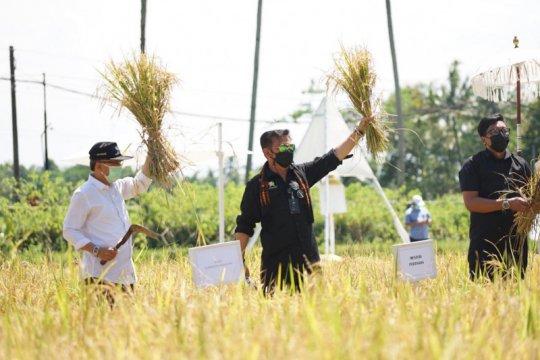 Mentan dorong pengembangan agrowisata di seluruh Indonesia
