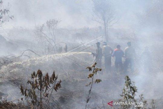 BPBD: 95 persen Karhutla di Aceh Barat sudah padam