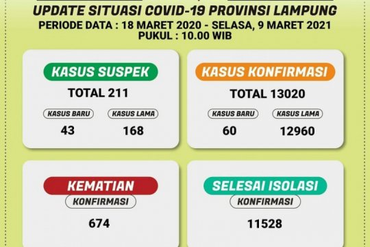 Dinkes catat kasus COVID-19 di Lampung bertambah 60 pasien