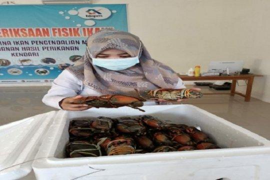 Sultra ekspor 25.300 kepiting bakau ke Singapura
