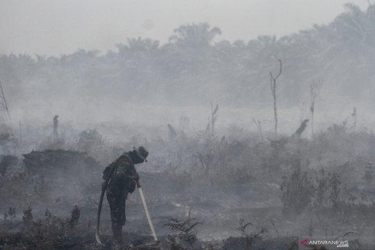 Kebakaran lahan gambut di Kabupaten Kampar