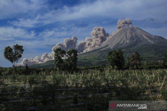 Dua kali erupsi, Sinabung luncurkan awan panas guguran 3.000 meter
