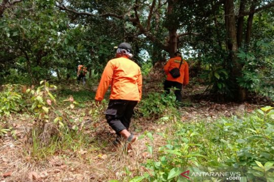 Lansia hilang di hutan Kolaka belum ditemukan setelah 3 hari pencarian