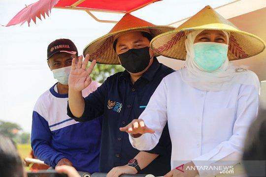Tiga menteri panen raya perdana padi di Gresik
