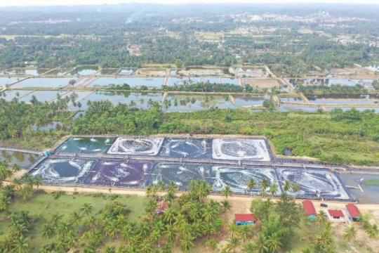 """Menteri Trenggono dukung pembangunan """"shrimp estate"""" di Kebumen"""