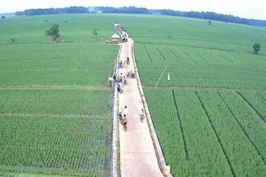 Kelompok sadar wisata di Lampung Timur buat wisata sawah