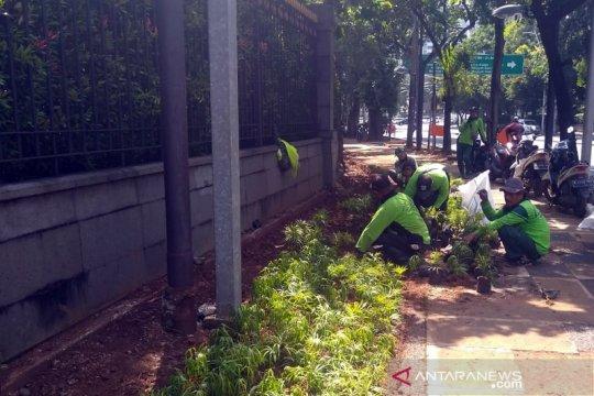 Pemkot Jakpus percantik jalan hingga TPU dengan 150 ribu tanaman
