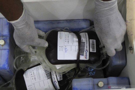 PMI: Plasma darah konvalesen di NTT ada stok 40 kantong
